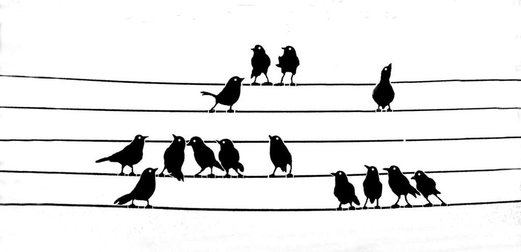 Bird-Chorus--2.jpg