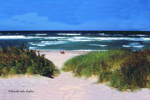 Beach-Path-Thru-Grass-.jpg