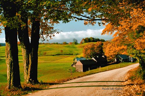 Classic-Shot-Of-the-Jenne-Farm.jpg