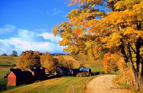 Jenne-Farm,-Reading,-Vermont--2.jpg