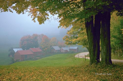 Jenne-Farm-In-Fog.jpg