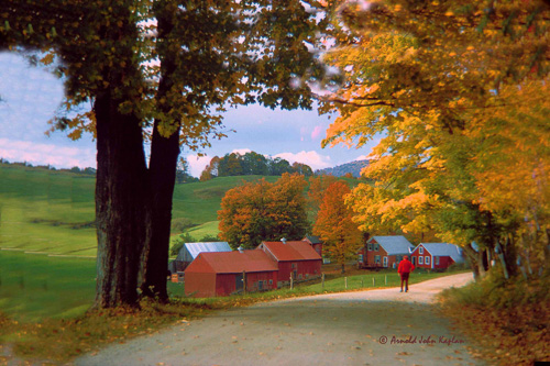 Road-To-The-Jenne-Farm.jpg